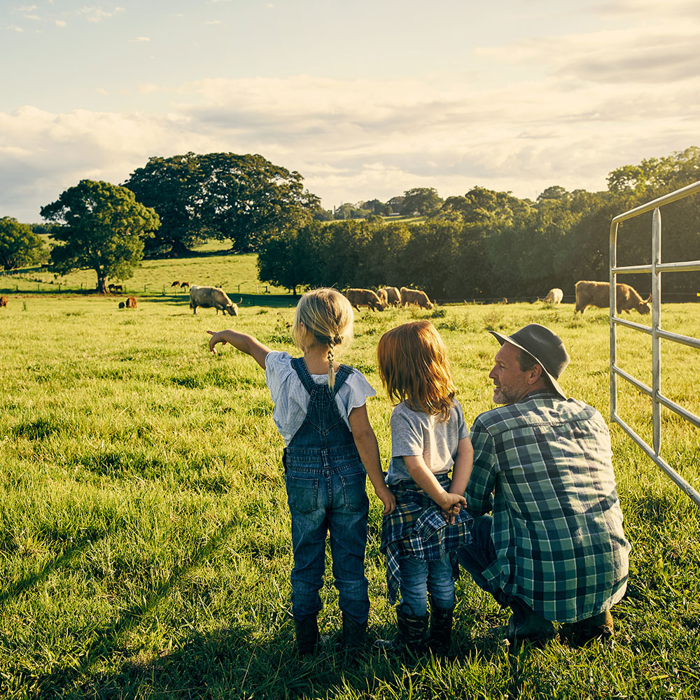 Farmer with daughters watching cattle in field